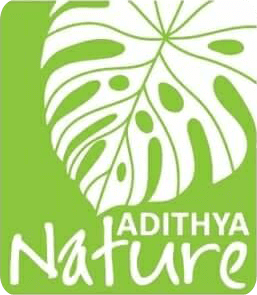 Adithya Nature Resort and Spa | Vythiri | Wayanad